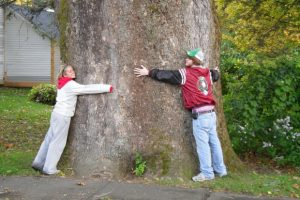 treehug_WikiCC_Tman21901
