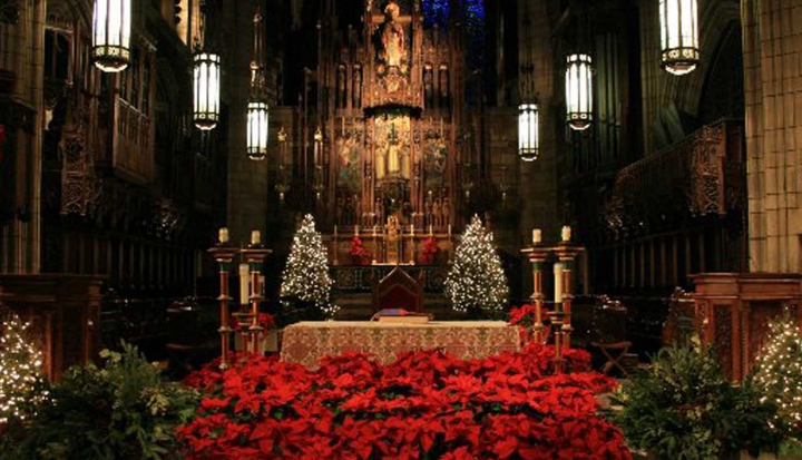church-altar-decorated-with-trees-for-christmas
