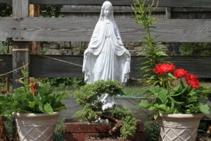 Mary garden_flickr