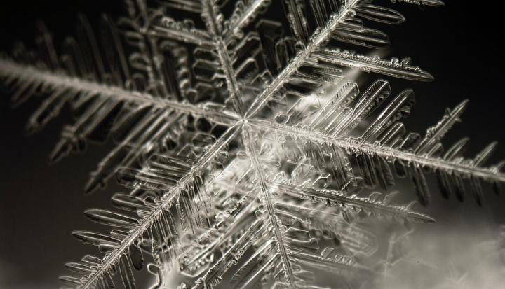 snowflake fractal_Flickr
