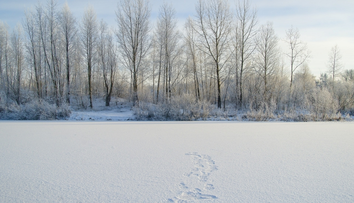 frozen lake AHF_pixabay