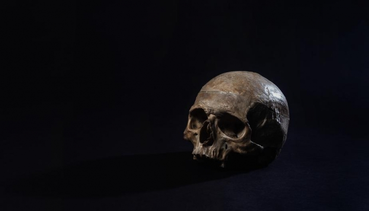 a-human-skull-sits-in-a-dark-room (1)