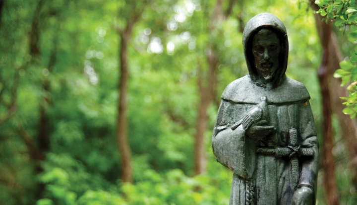 statue-of-saint-francis-in-trees
