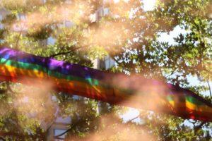 rainbow-through-trees