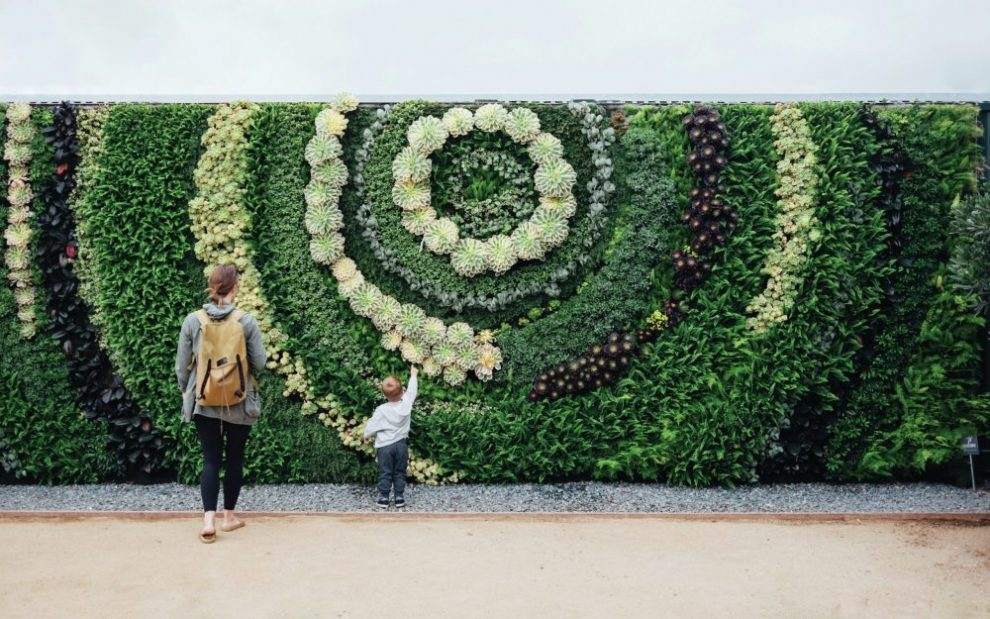woman-and-child-looking-at-flowers-arranged-in-spiral